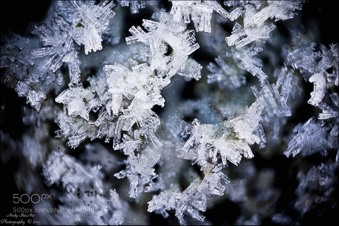 Photograph Ice Crystals by Andy Stuart on 500px