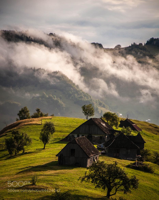 Photograph Untitled by Andi Cretu on 500px