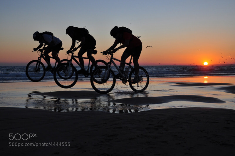 Photograph Cycling in Line by João Coutinho on 500px