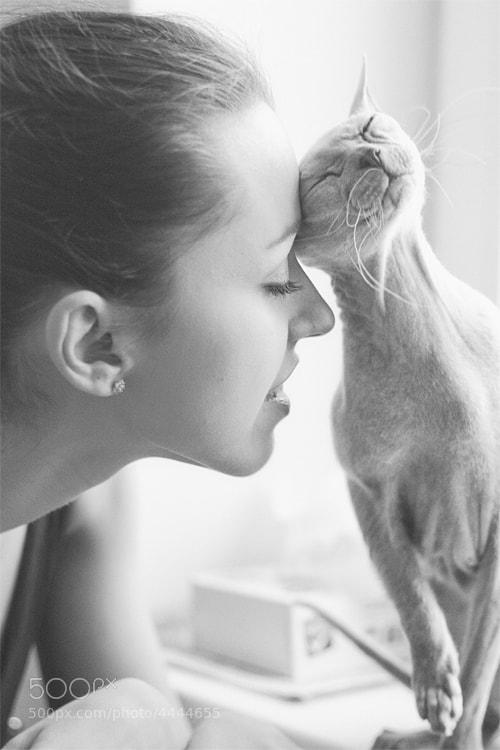 Photograph She and Cat by Olga  Shut (nickname Helga Novak) on 500px