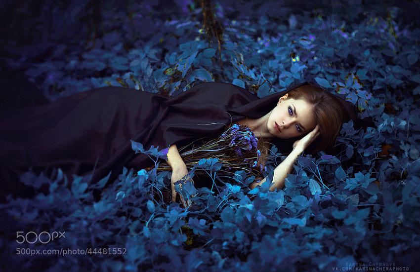 Photograph Azure by Karina Chernova on 500px
