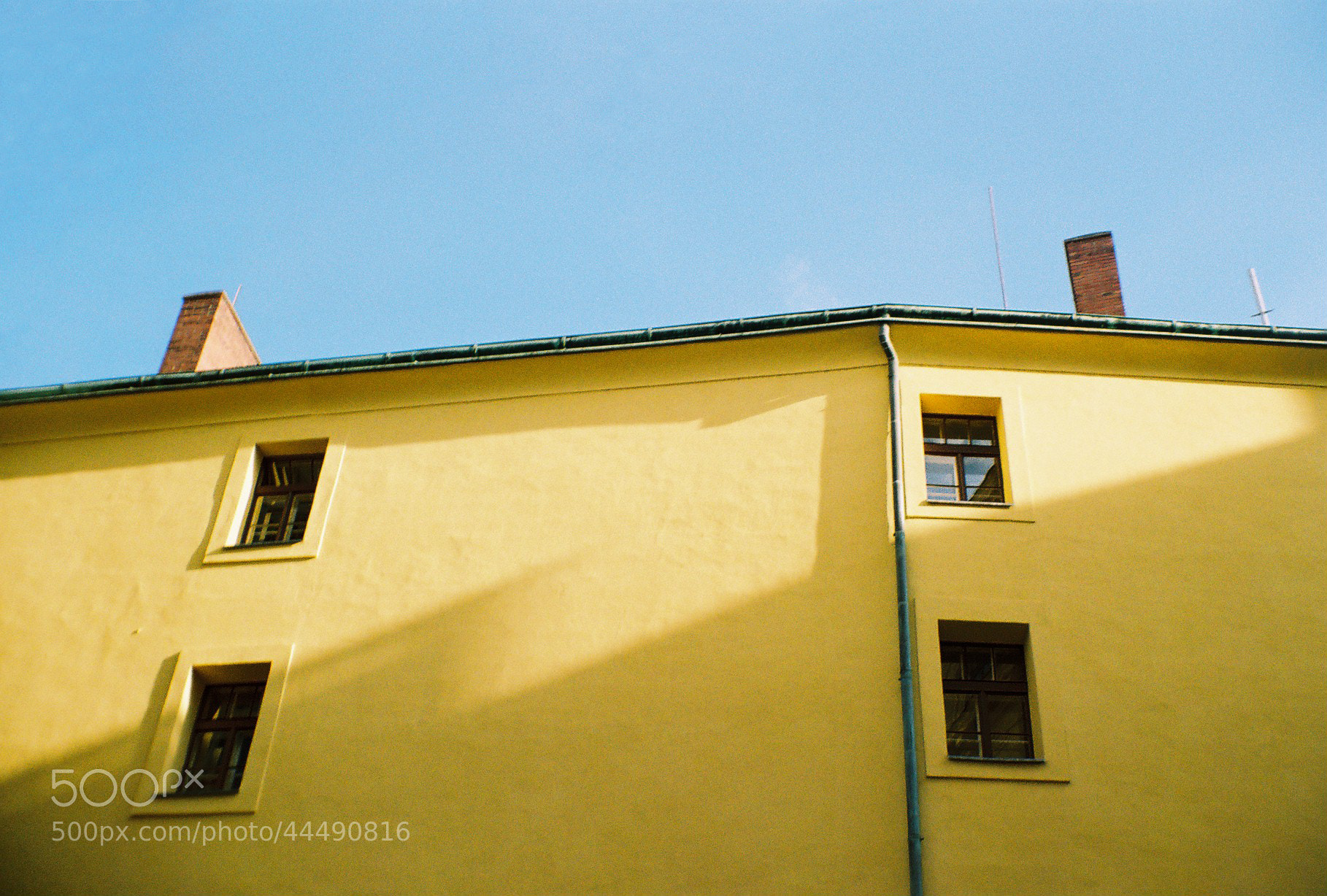 Photograph Yellow by Antonina  on 500px