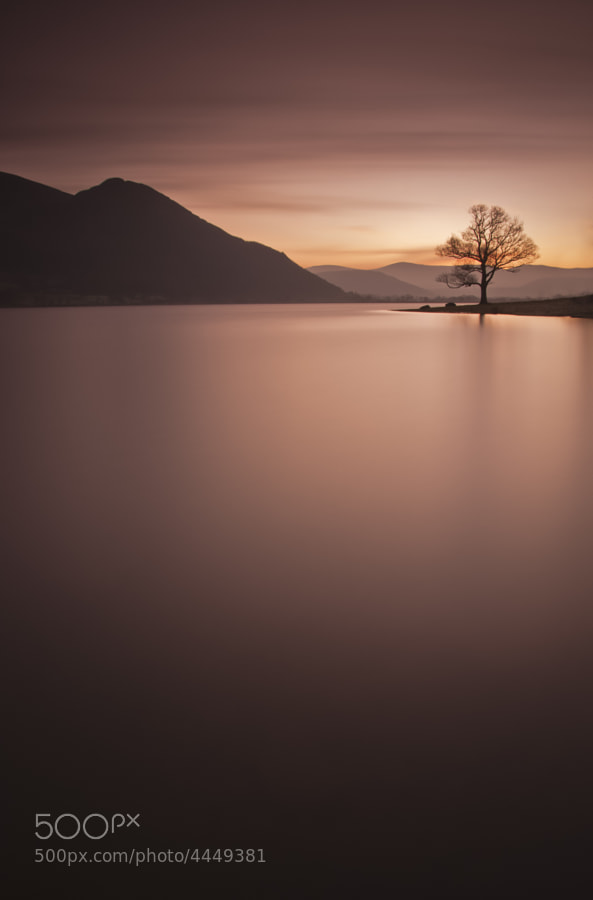 I've always been struck by this tree as it stands looking over Bassenthwaite to Skiddaw. This was a 493 second exposure.