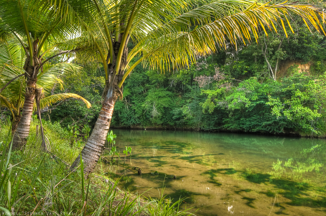 summary of green days by the river Summary/annotation - tells the story of shellie, a trinidadian boy who moves to a new village and meets two girls by the author of the year in san fernando.