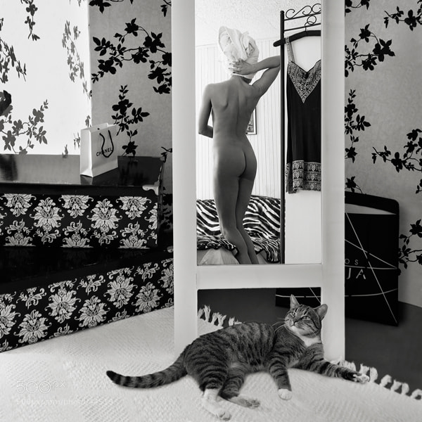 Photograph about... cat by Zilvinas Valeika on 500px