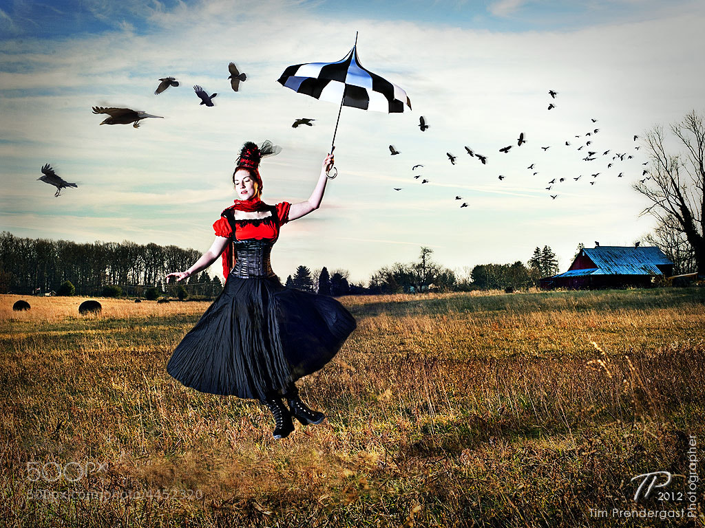 Photograph Poppins and Poe by Tim Prendergast on 500px