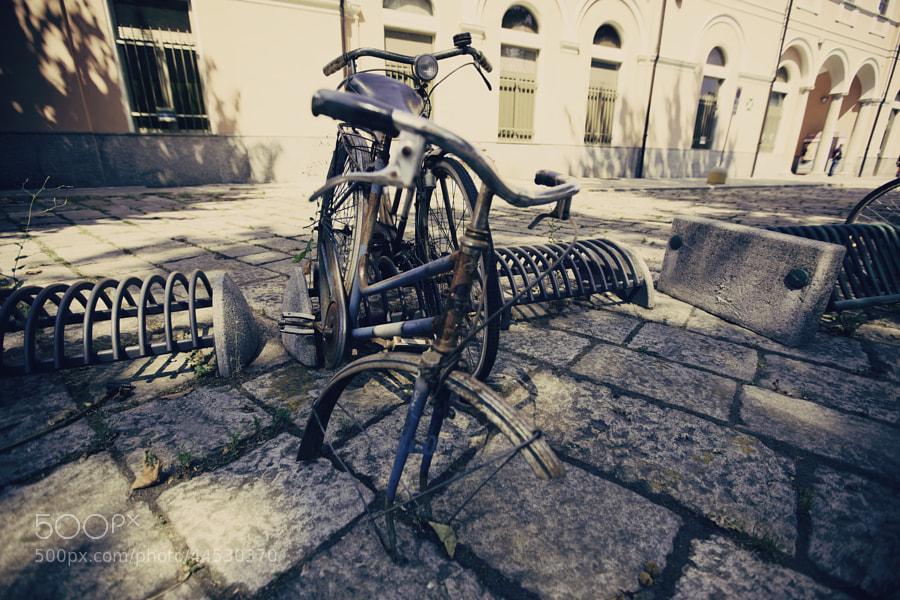 Photograph Bicicletta abbandonata by Filiberto Maida on 500px