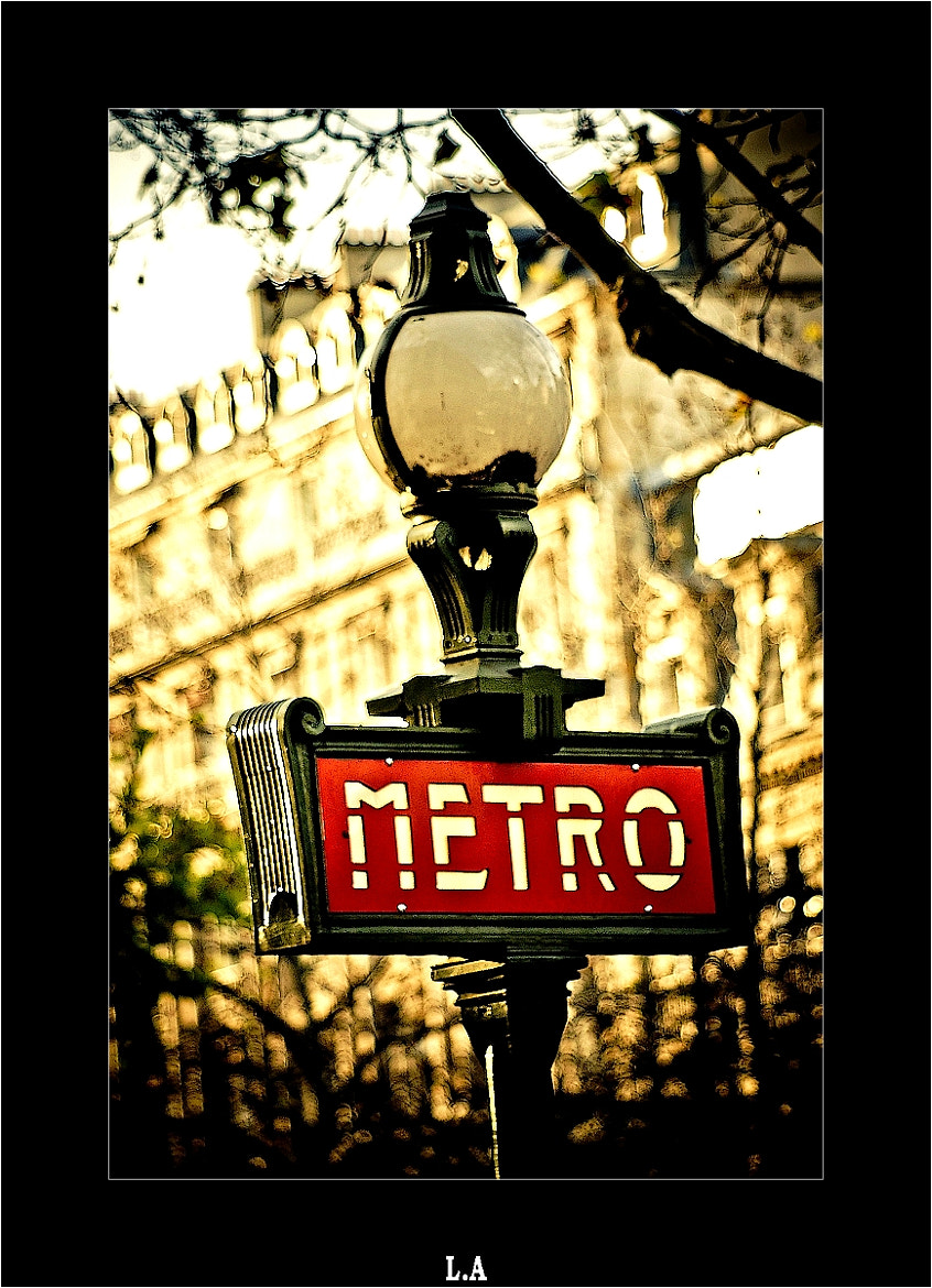 Photograph Subway's gate in Paris by Loïc Auffray on 500px