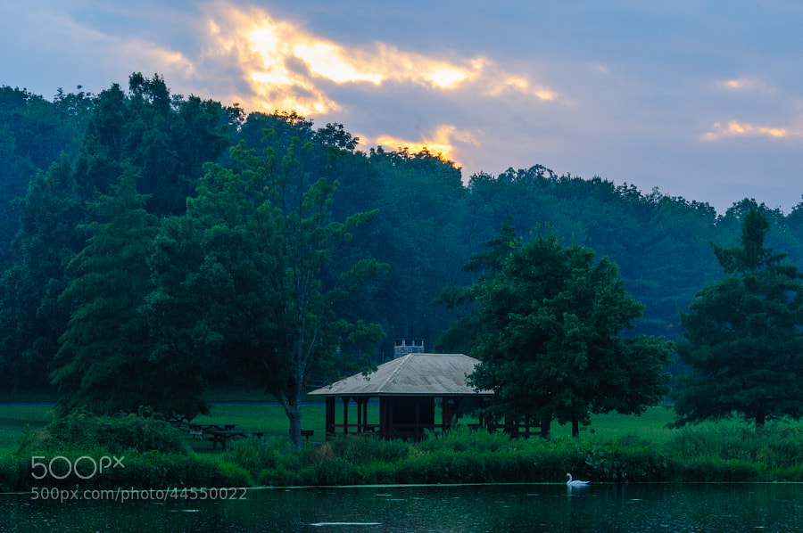 A misty rain falling on the pond at sunset.