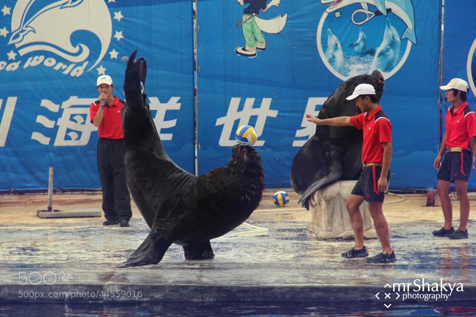 Photograph Show @ Seaworld by Manish Shakya on 500px