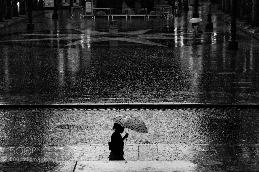 Photograph chove  by Leonardo  Amaro Rodrigues on 500px