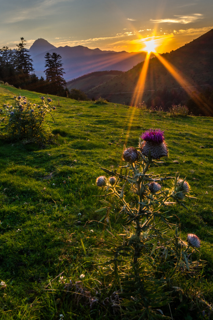 Photograph Sunset at Col d'Aspin by Hervé D. on 500px