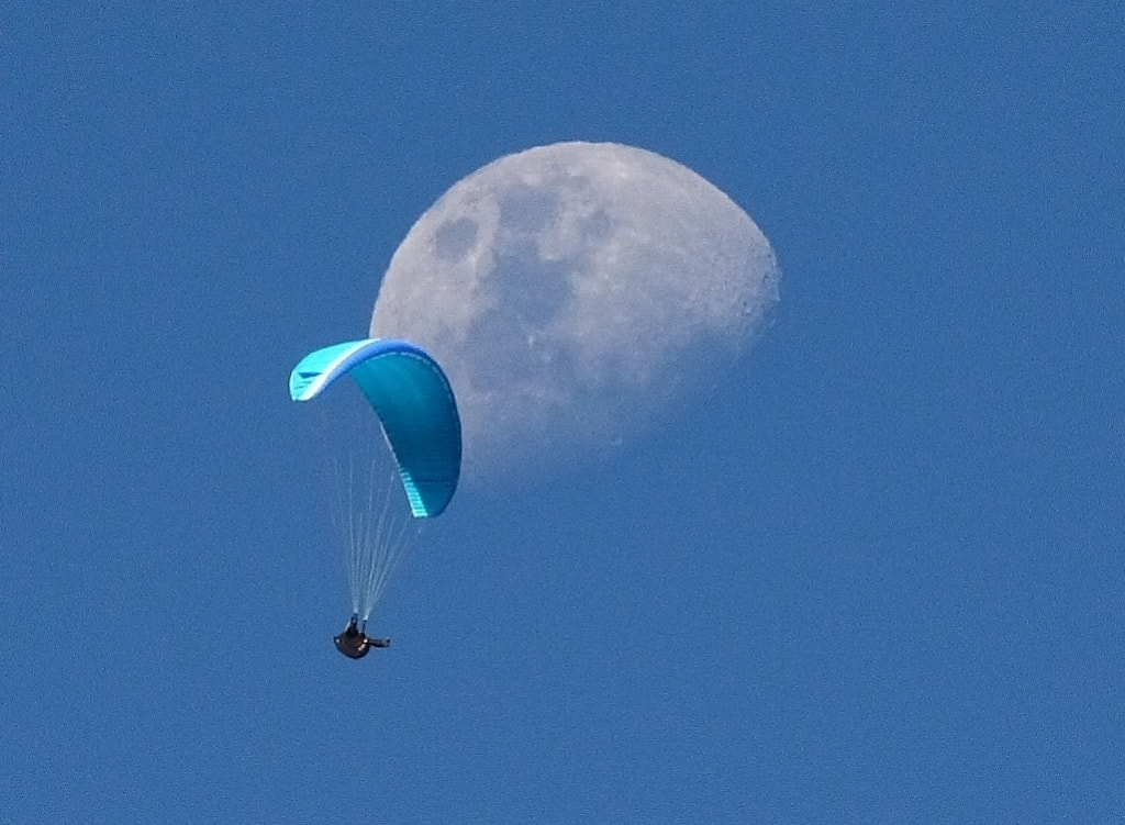 Photograph Fly Me to the Moon by Will   Rodrigues on 500px