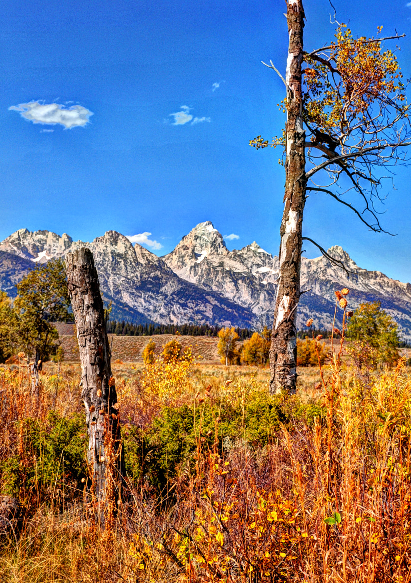 Photograph The Grand Teton by Ronnie Wiggin on 500px