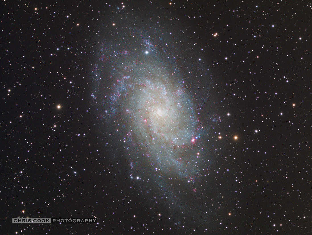 Photograph Pinwheel Galaxy - M33 by Chris Cook on 500px