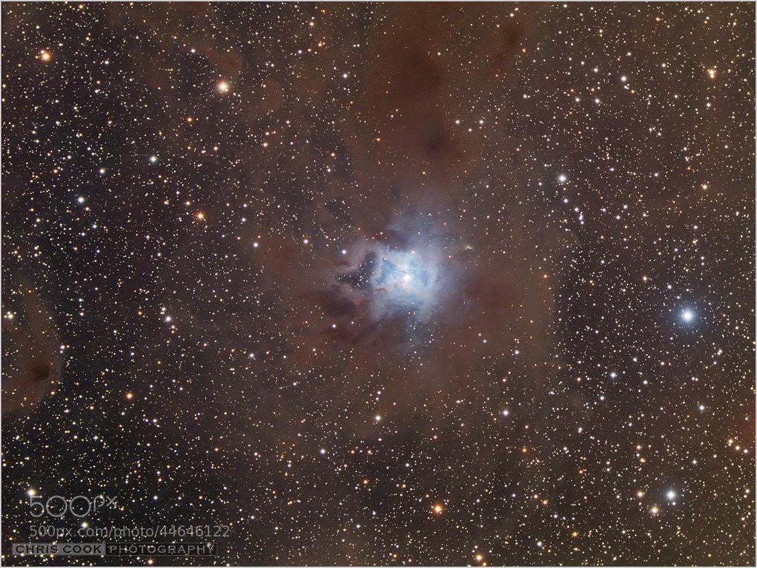 Photograph Iris Nebula - NGC7023 by Chris Cook on 500px