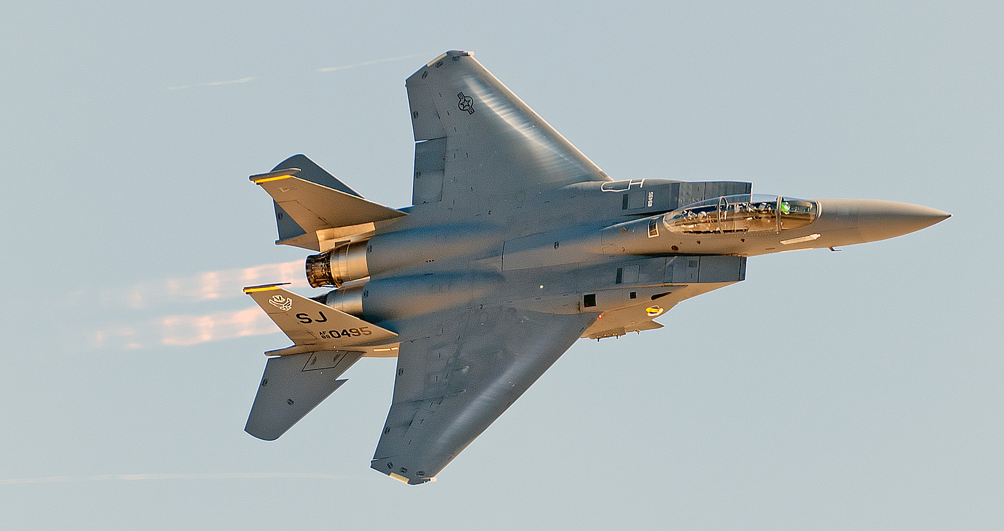 Photograph Strike Eagle by Clifford Martin on 500px