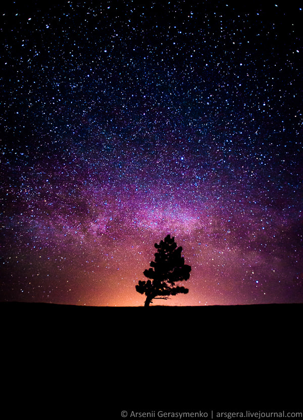 Photograph Space: Milky Way, Stars and the Tree by Arsenii Gerasymenko on 500px