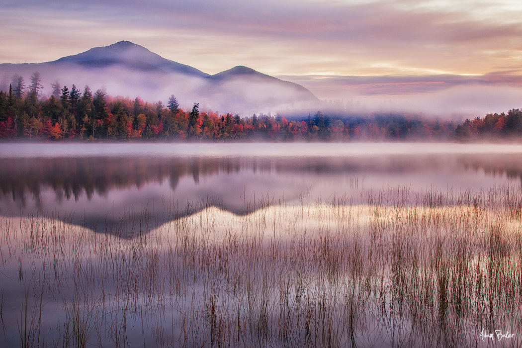 Photograph Morning Glow by Adam Baker on 500px