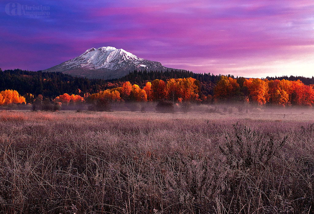 Photograph Mt. Adams by Christina Angquico on 500px
