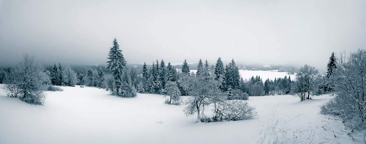 Photograph Winter Panorama by Tomas Pospichal on 500px