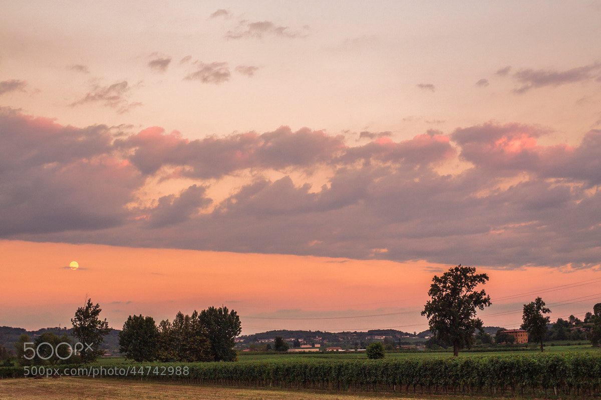 Photograph sweet sky by FeFoPhotography  on 500px