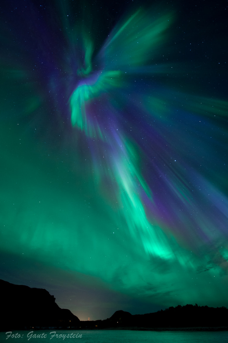 Photograph The aurora angel! by Gaute Frøystein on 500px
