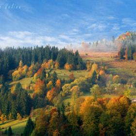 October morning by Cristina-Velina Ion (Cristina-Velina)) on 500px.com