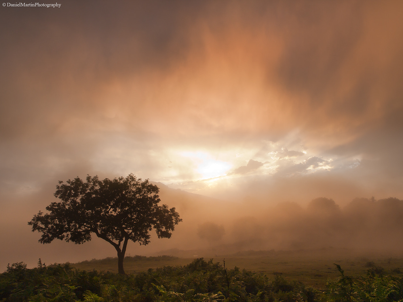 Photograph storm of mist and fire by Daniel Martin. on 500px