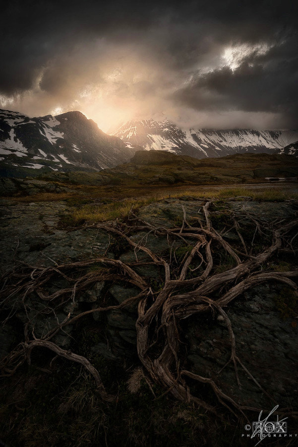 Photograph Dark Altar by Enrico Fossati on 500px
