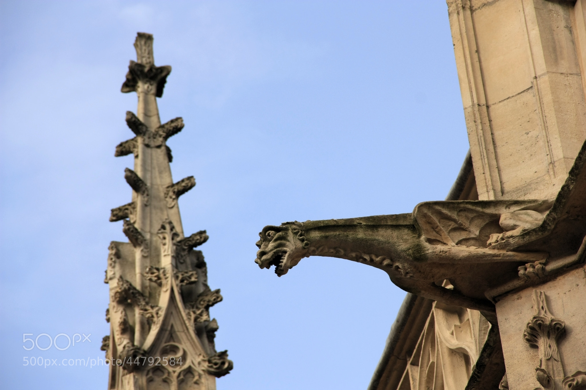Photograph Gargoyle by Rubens Hardt on 500px
