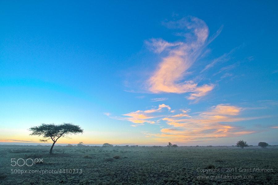 Photograph Kalahari Sunrise by Grant Atkinson on 500px