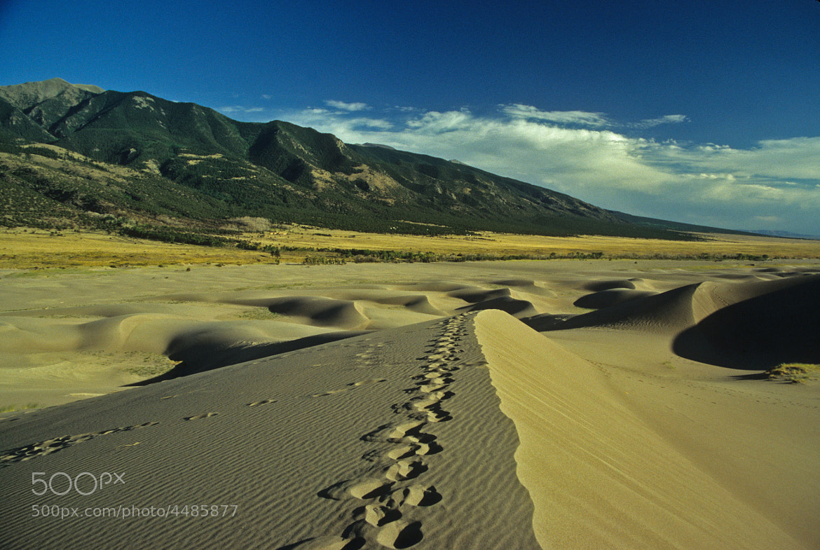 Photograph Footsteps by Jim Slagle on 500px