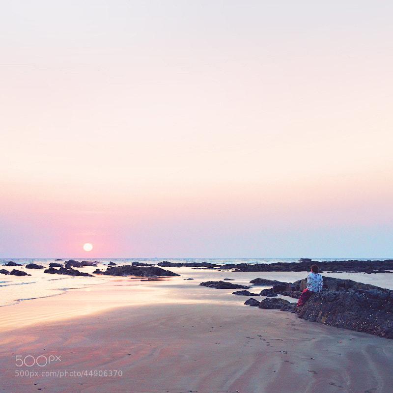 Photograph sun & roses by maha  on 500px
