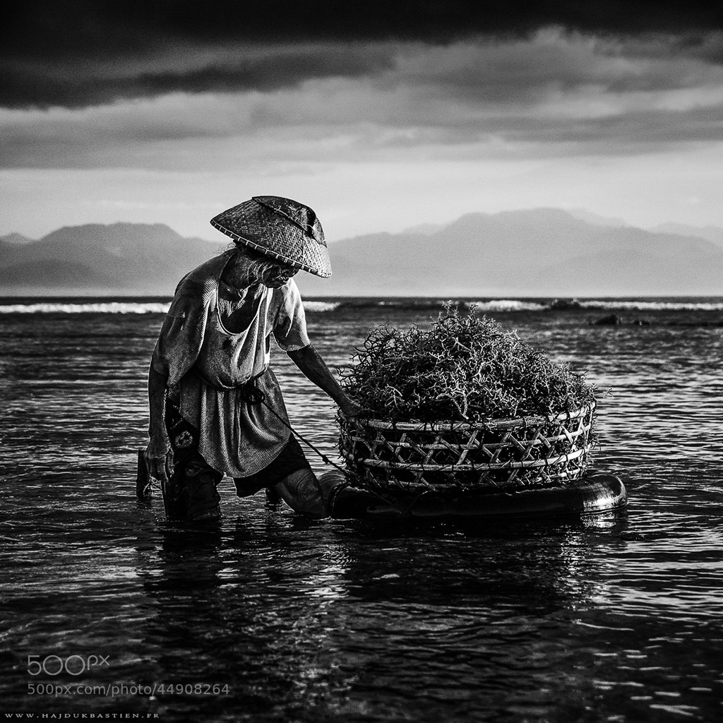 Photograph No limit by Bastien HAJDUK on 500px