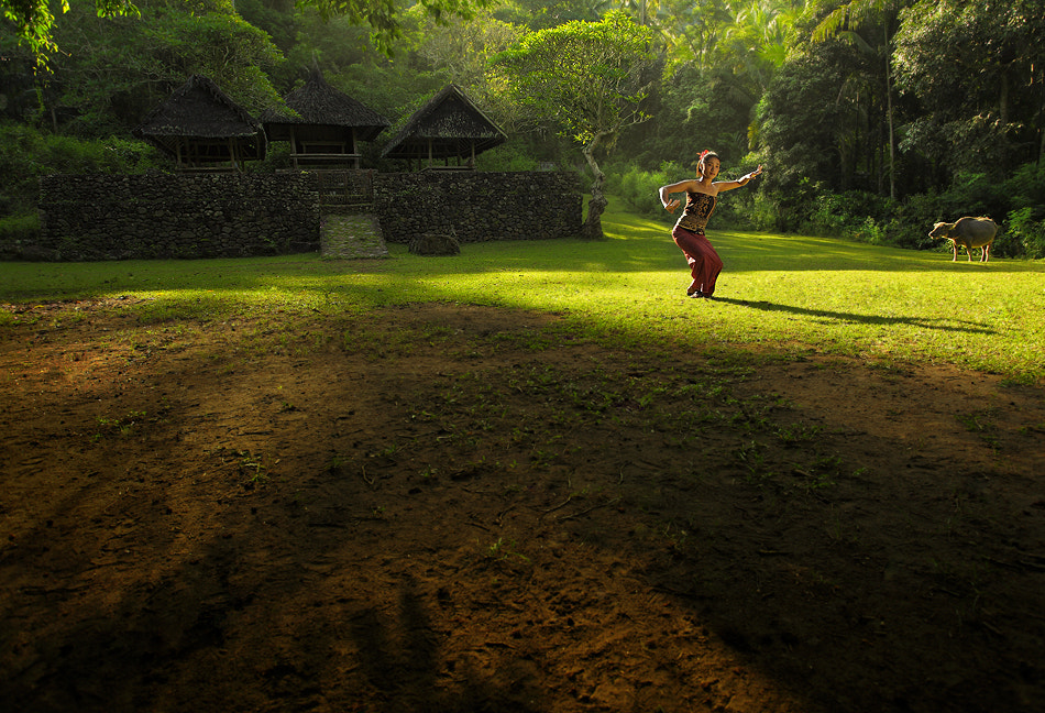 Photograph Morning Dance by Ario Wibisono on 500px