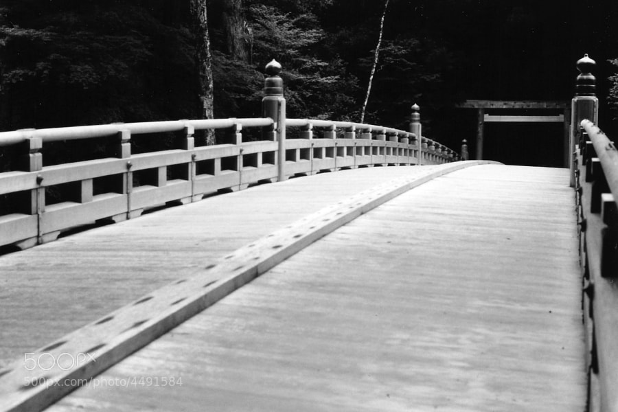 A traditional wooden bridge in Ise Jingu, one of the most important shrines of Japan.
