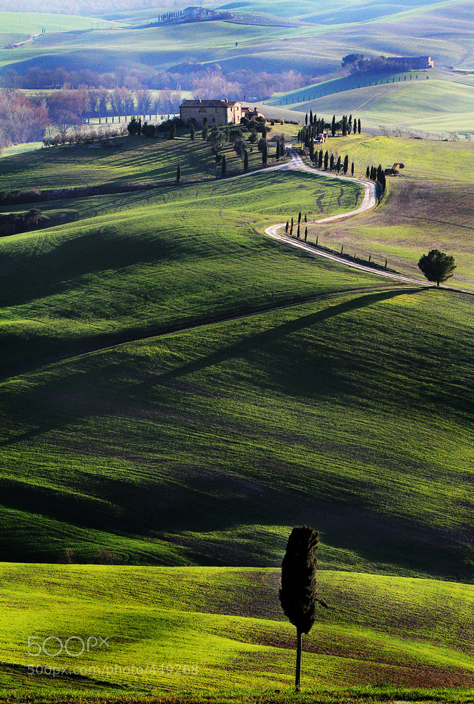 Photograph The long shadows of the evening in Tuscany .. by Edmondo Senatore on 500px