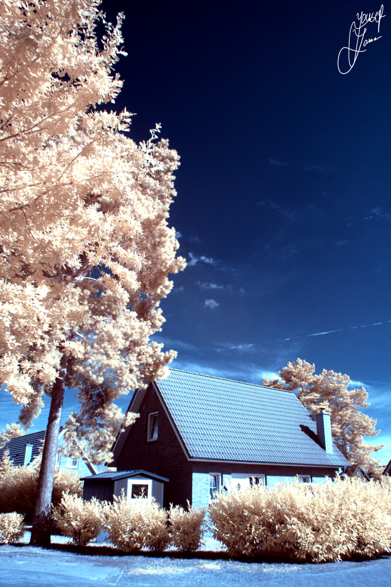 Photograph IR by Yousef Zaman on 500px