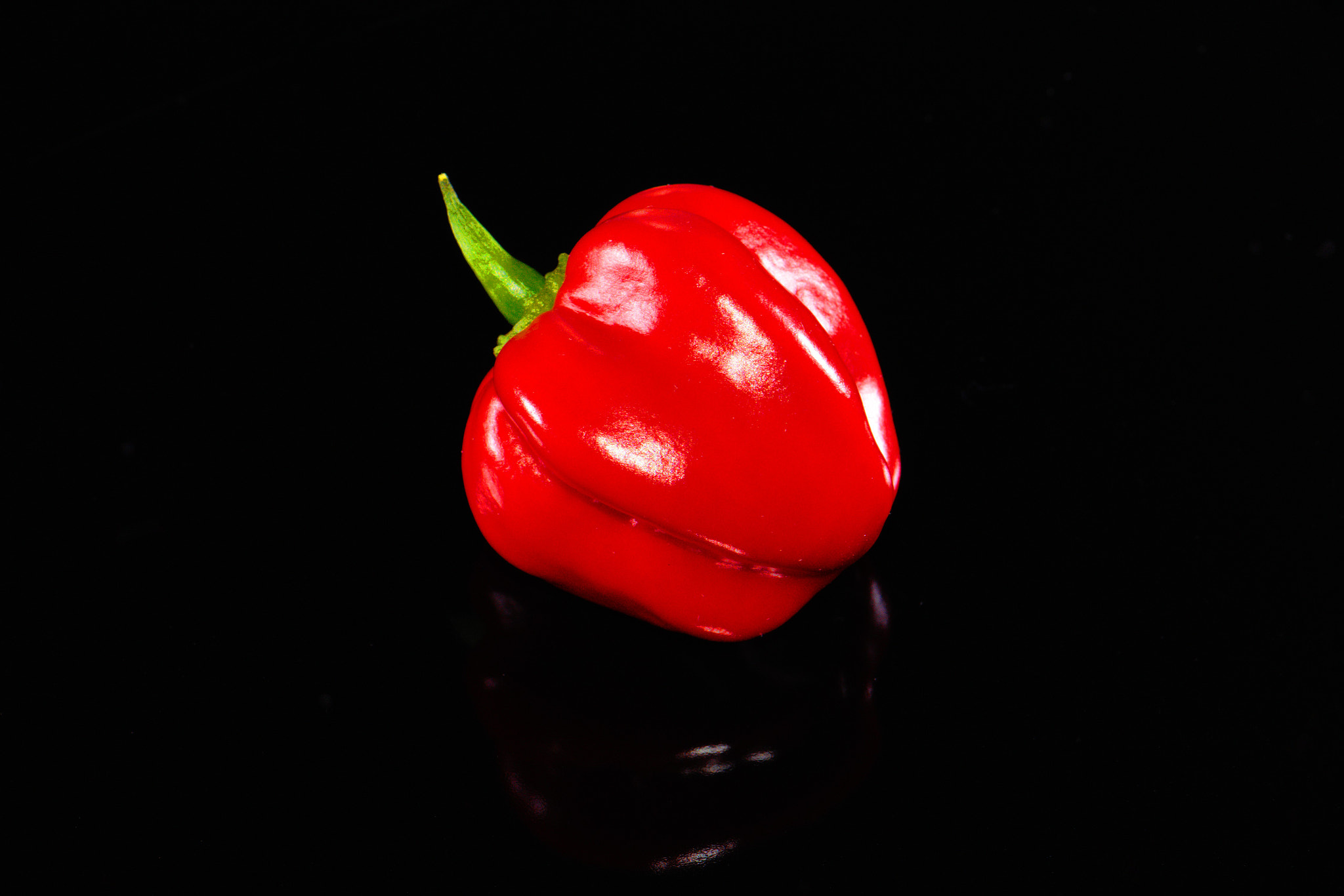 Photograph Red Habanero by Jochen B. on 500px