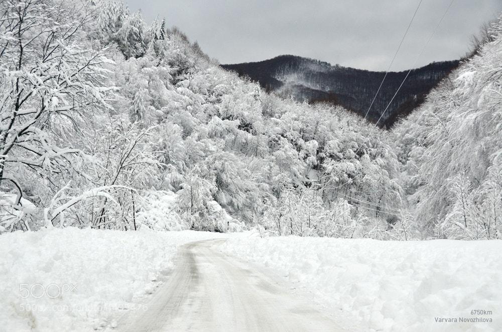 Photograph Winter Road, Bulgaria by Varvara Novozhilova on 500px