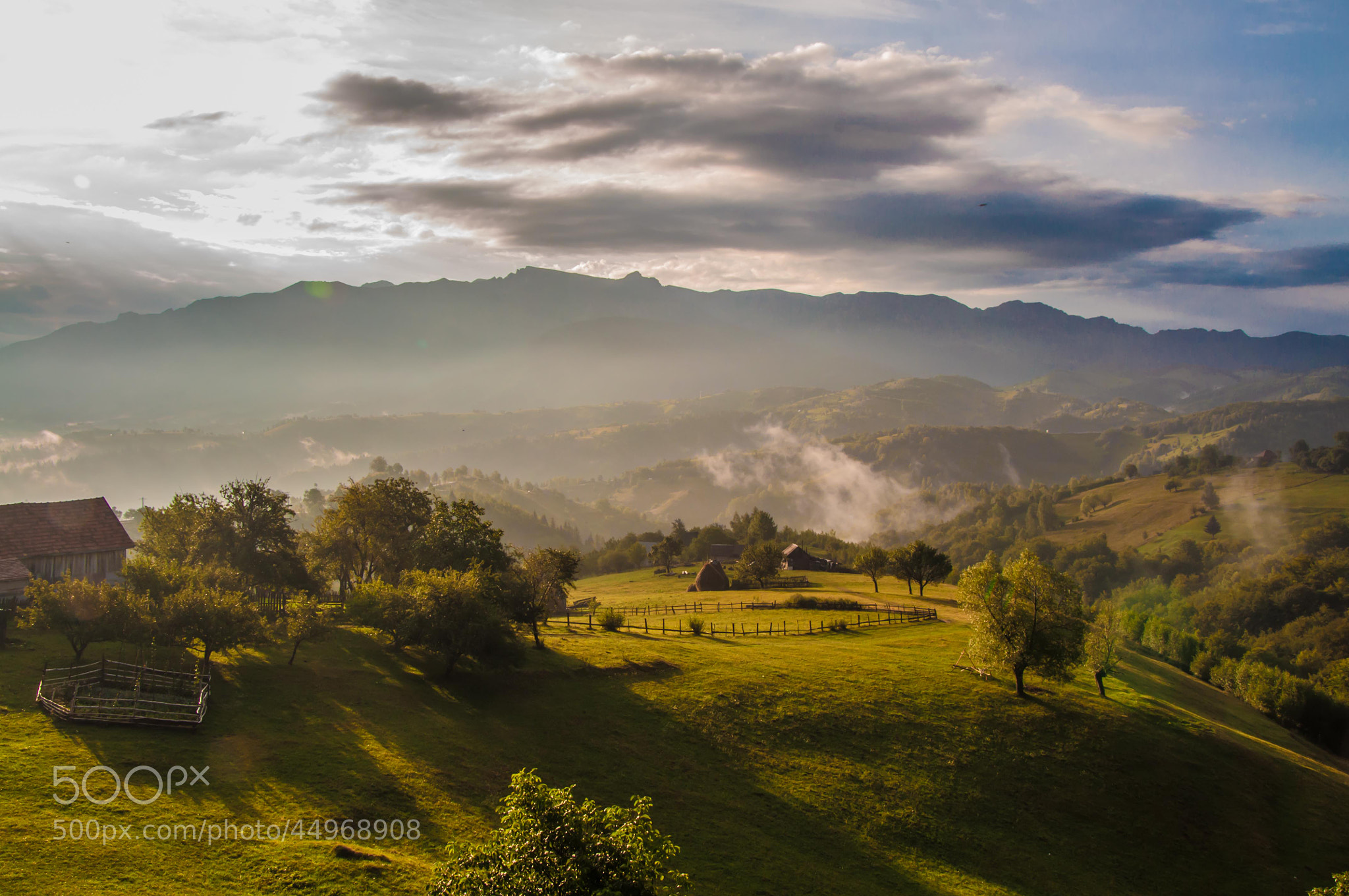 Photograph Good morning! by Andi Cretu on 500px
