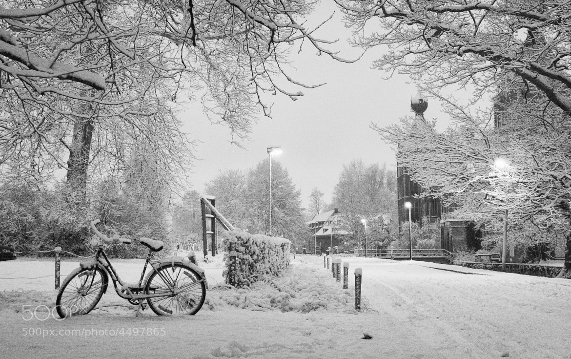 Photograph Arenberg Winter IV by DOF Factory on 500px