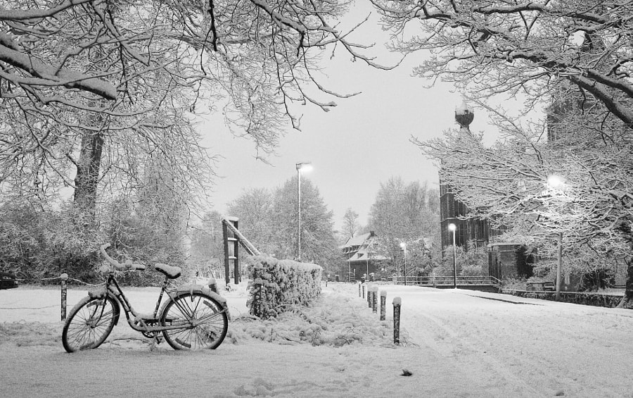 Arenberg Winter IV