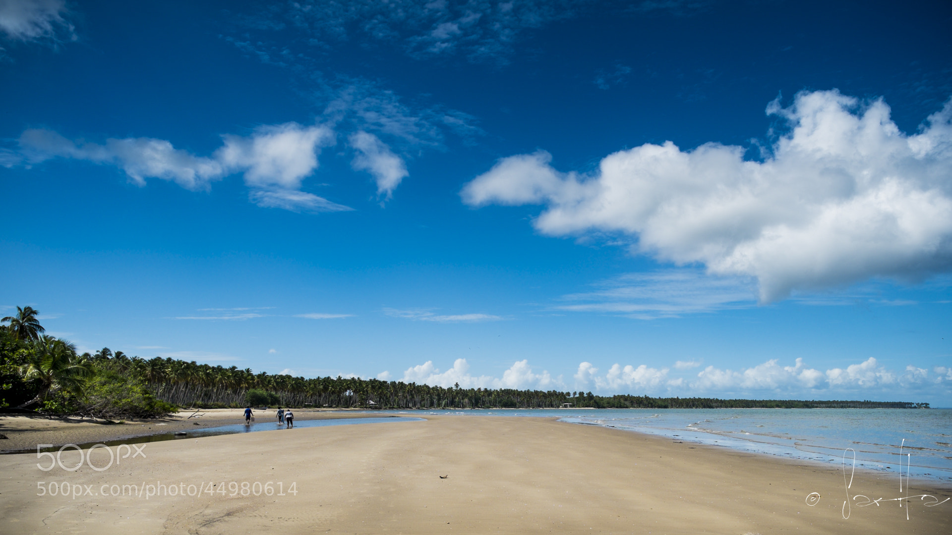Photograph Untitled by Sarita Rampersad on 500px