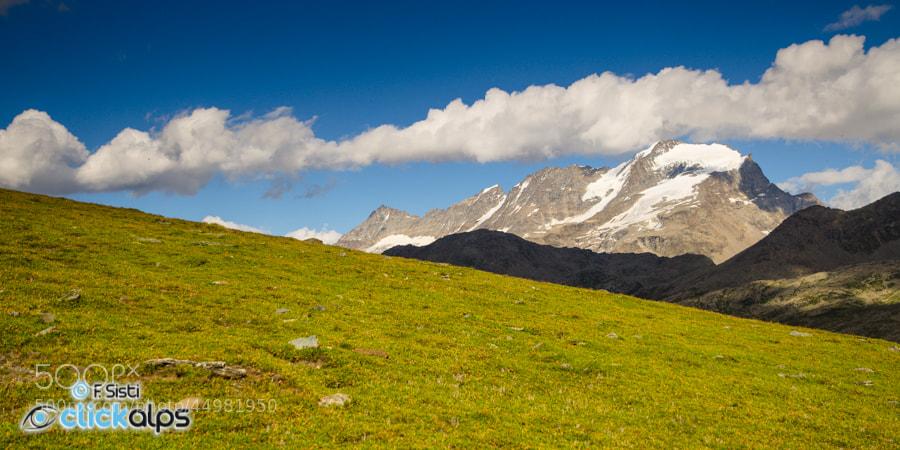 Photograph La bellezza della semplicità (Valsavarenche, Valle d'Aosta, Parco Nazionale Gran Paradiso) by Francesco Sisti on 500px