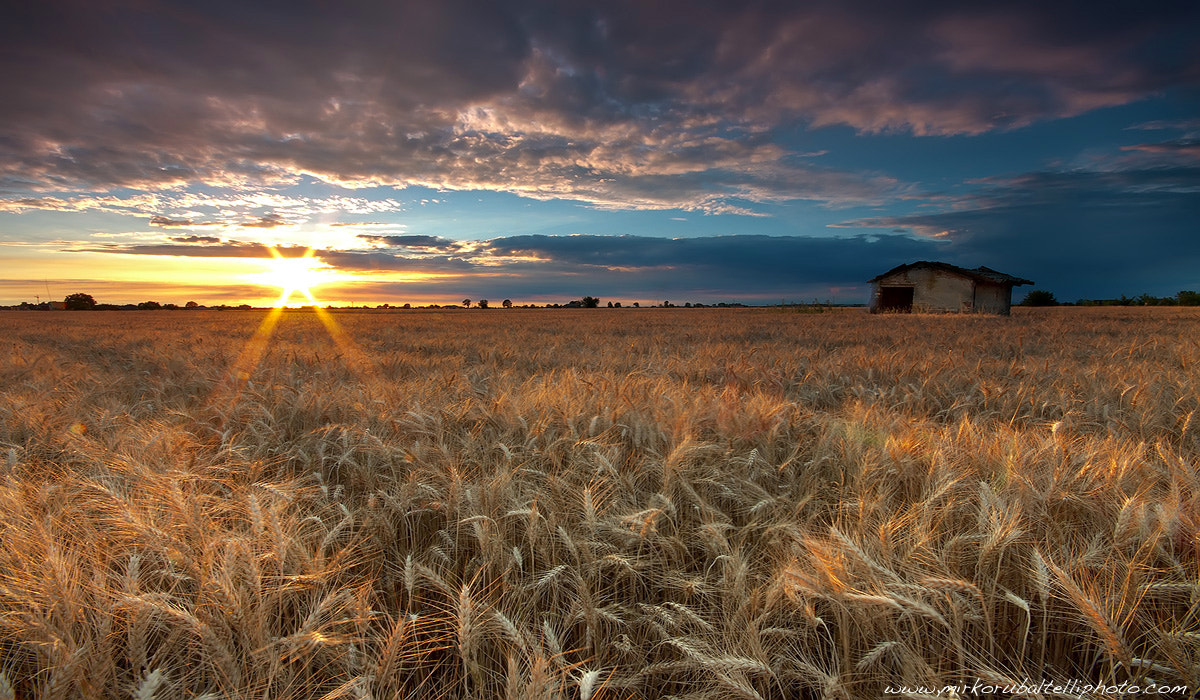 Photograph The house in the grain by Mirko Rubaltelli on 500px