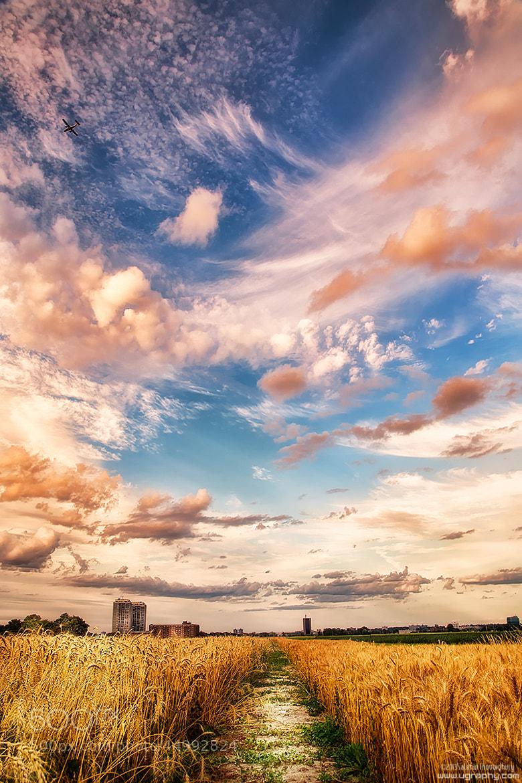 Photograph Urban Nature by Salehin Chowdhury on 500px