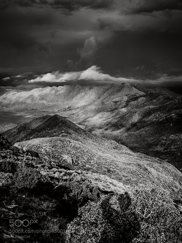 Photograph Mt Laguna BW by Royer Dirt on 500px