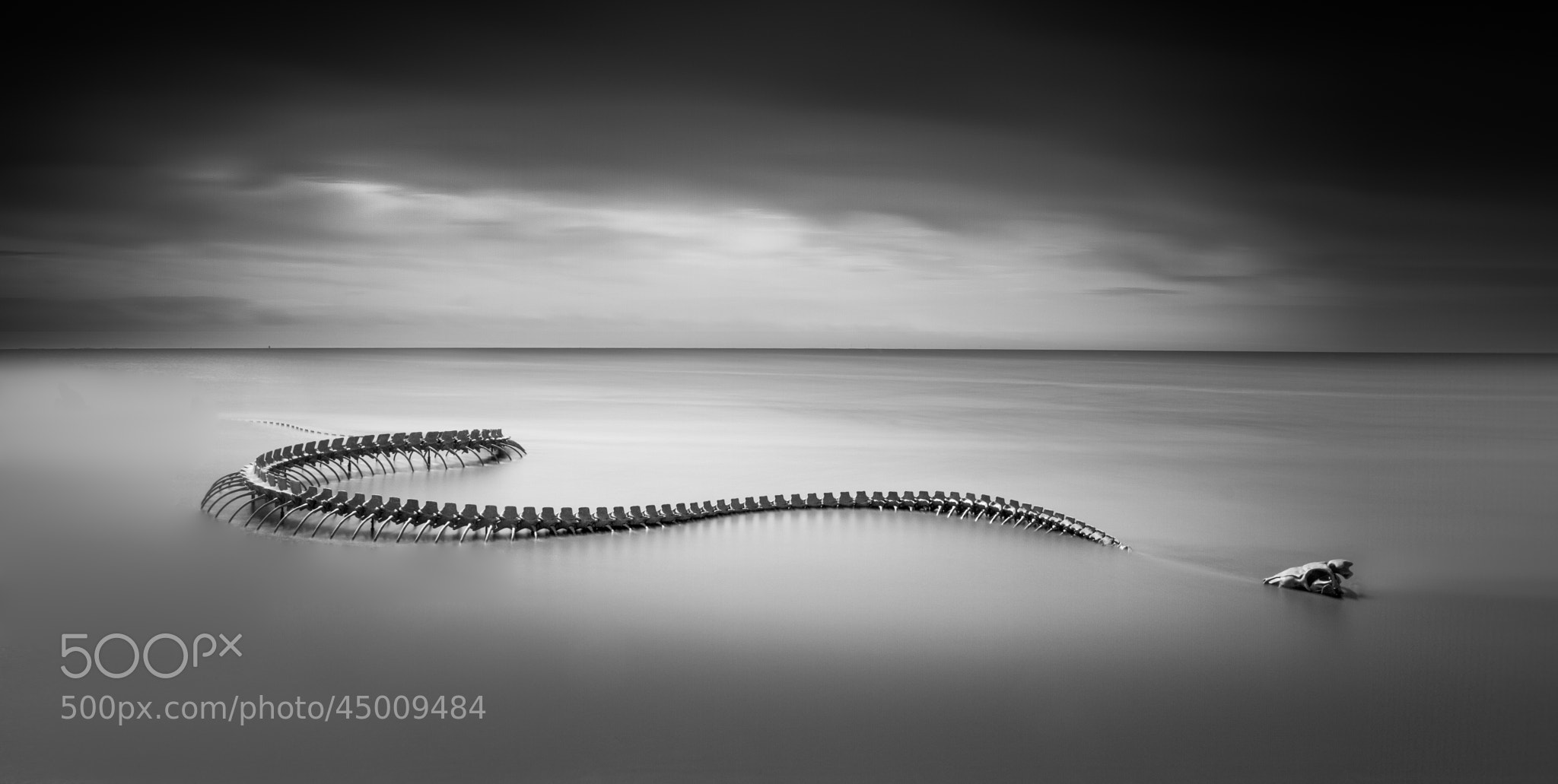 Photograph Serpent d'Océan by Emmanuel LE GUELLEC on 500px